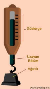 dinamometrenin bölümleri