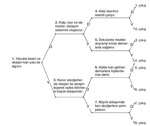 Fen bilimleri 6 sınıf 2 dönem 2 yazılı 2012 2013