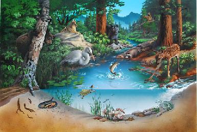 ekosistem 7. sınıf