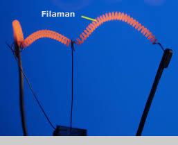 filaman