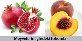 Meyvedeki tohum