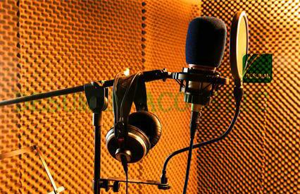 stüdyo ses soğrulma